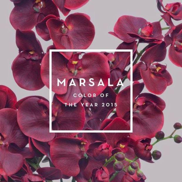 marsala11
